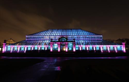 Gewächshaus-Show