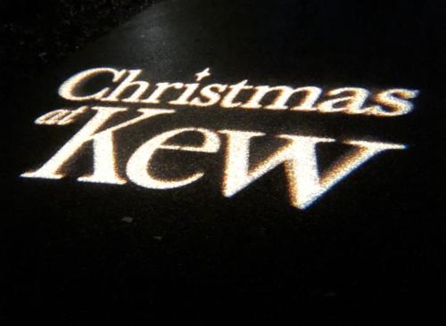 Christmas at Kew...